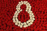 8 Марта — Международный женский день.